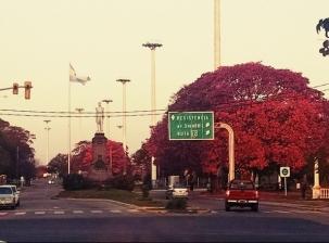 Corrientes Tiene Paye Argentine