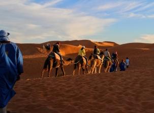 Accompagnateur pour découvrir Marrakech